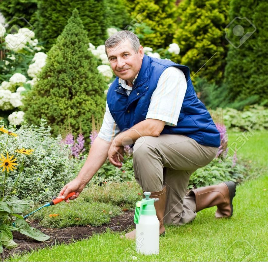 5612775-Man-raking-garden-Stock-Photo-gardening-man-gardener