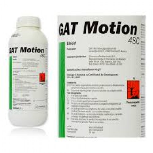 gat motion