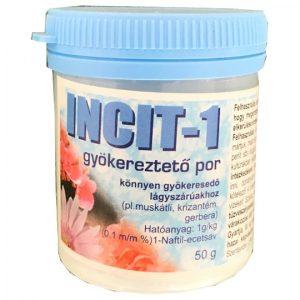 incit-1