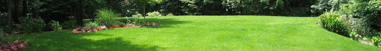 garden 1,3