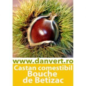 Betizac
