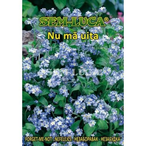 NUMAUI