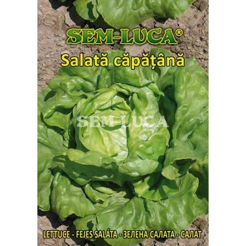 Salata¦å ca¦åpa¦åt¦ºa¦éna¦å attraktion
