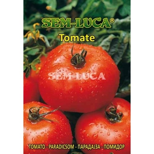 Tomate Ace 55vf
