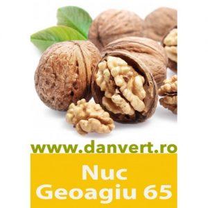 Nuc Geoagiu 65