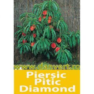 Piersic pitic Diamond