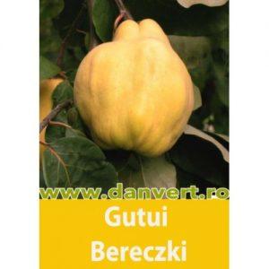 gutui_bereski