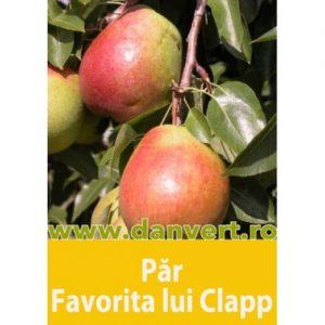 par_favorita_lui_clapp
